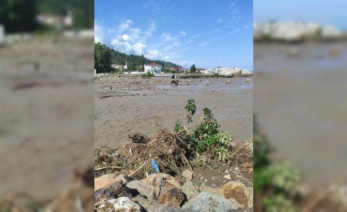 Kastamonu'da sel sularında mahsur kalan inek vinç yardımıyla kurtarıldı