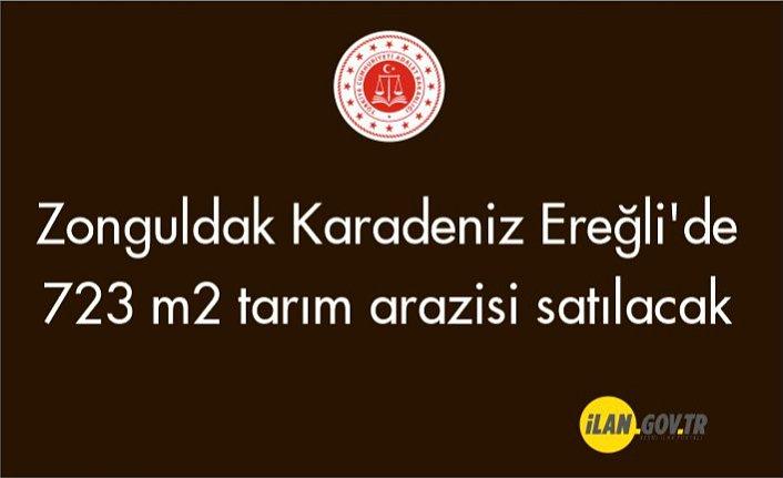 Zonguldak Karadeniz Ereğli'de 723 m² tarım arazisi satılacak