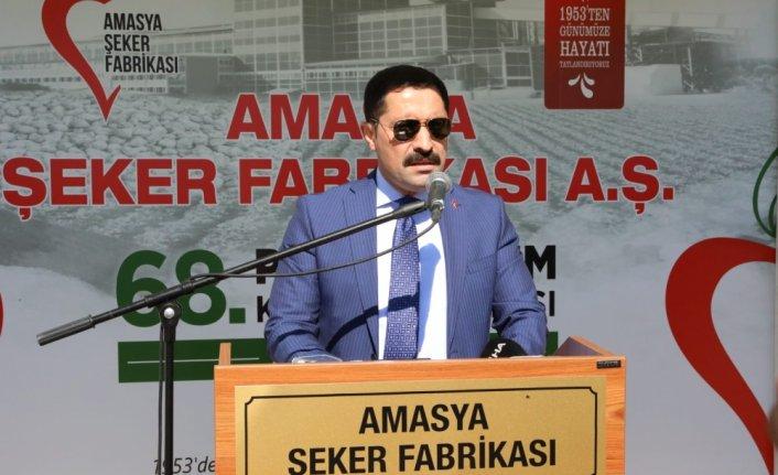 Amasya Şeker Fabrikası'nda 68. pancar alım kampanyası başladı