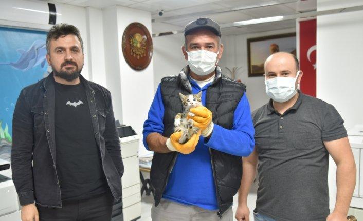 Havalandırma boşluğunda mahsur kalan kedi yavrusu kurtarıldı