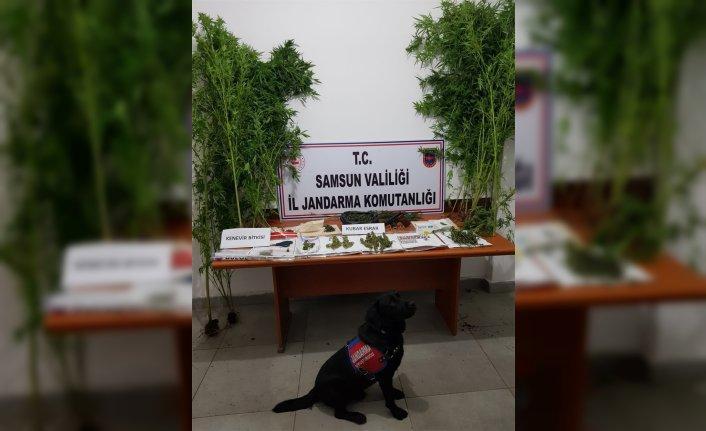 Samsun'da uyuşturucu operasyonlarında 13 şüpheli yakalandı