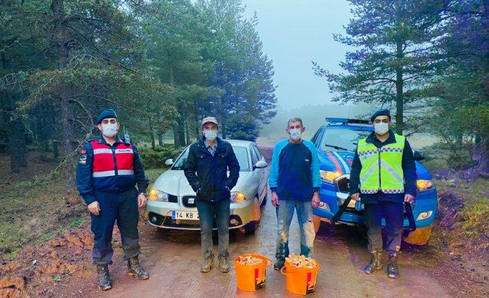Bolu'da mantar toplamak isterken ormanda kaybolan 2 kişi bulundu