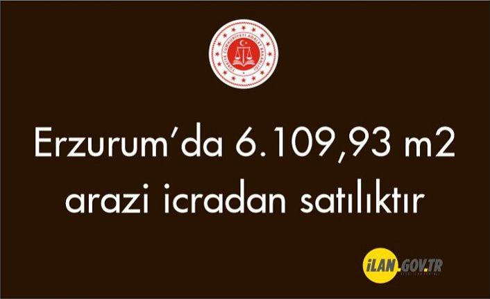 Erzurum İspir'de 6.109,93 m² arazi icradan satılıktır