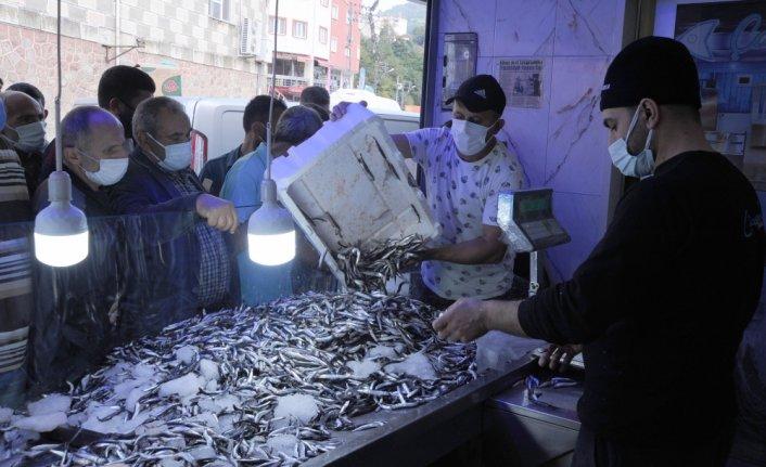Hopa'da kilogramı 5 liradan satılan hamsi, balıkçı tezgahında kuyruk oluşturdu