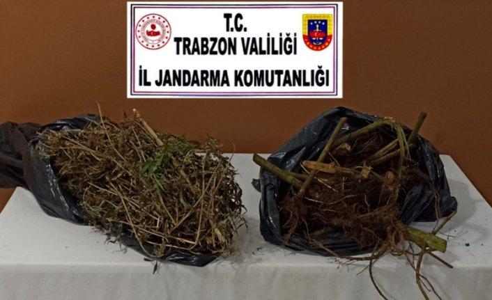 Trabzon'da uyuşturucu operasyonunda 6 kişi yakalandı