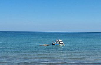 Sinop'ta selin denize sürüklediği 35 bin ton tomruk teknelerle toplanıyor