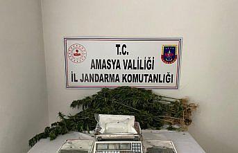 Amasya'da uyuşturucu operasyonunda bir kişi tutuklandı