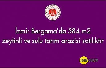 İzmir Bergama'da 584 m² zeytinli ve sulu tarım arazisi mahkemeden satılıktır
