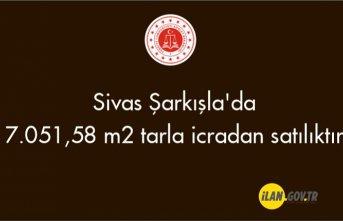 Sivas Şarkışla'da 7.051,58 m² tarla icradan satılıktır