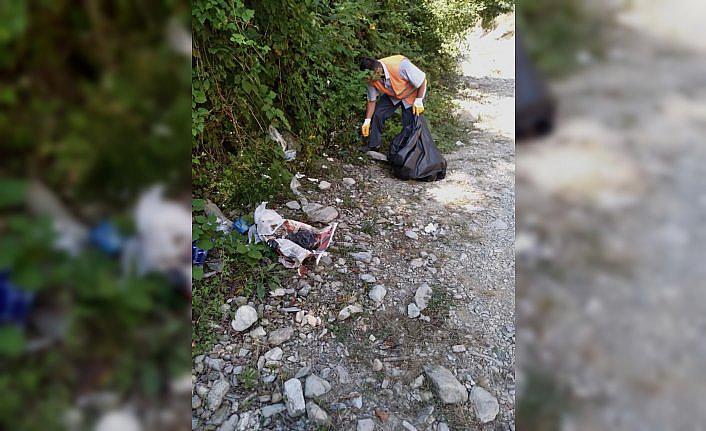 Doğa harikası Gölalan Şelalesi'nden 150 kilogram çöp toplandı