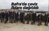 Bafra'da ceviz fidanı dağıtıldı