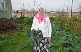 Samsunlu 90 yaşındaki kadın Kovid-19'u yendi