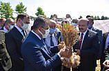 Tarım ve Orman Bakan Yardımcısı Metin, Taşköprü'de sarımsak hasadına katıldı: