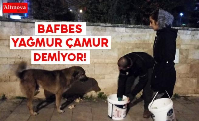 BAFBES YAĞMUR ÇAMUR DEMİYOR!