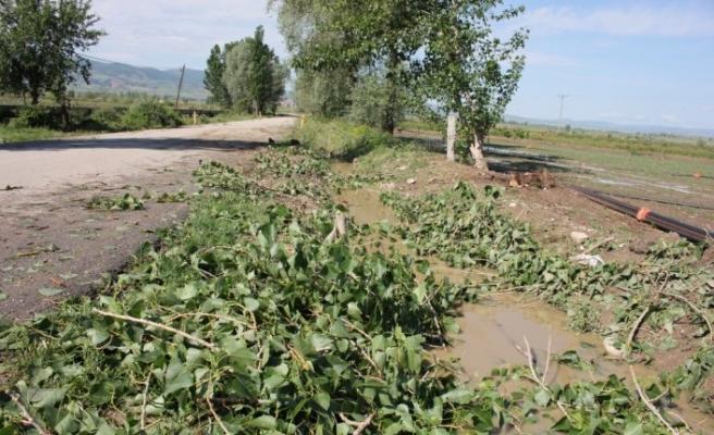 GÜNCELLEME - Amasya'da sağanak ve dolu etkili oldu