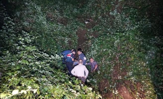 Artvin'de kamyonet uçuruma yuvarlandı: 1 ölü