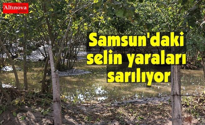 Samsun'daki selin yaraları sarılıyor
