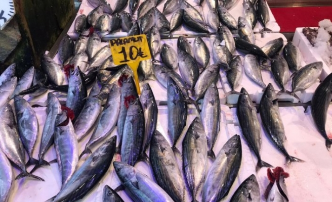 Doğu Karadeniz'den yapılan su ürünleri ihracatı yüzde 38 arttı