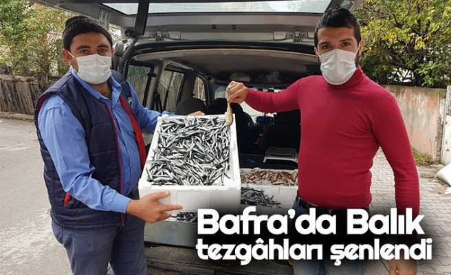 Bafra'da Balık tezgâhları şenlendi