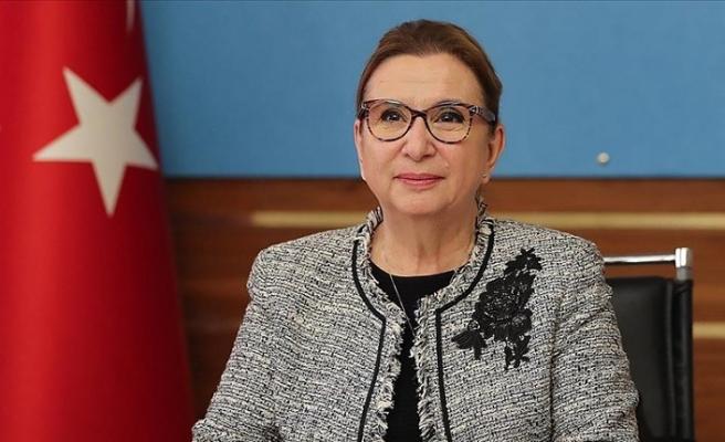 Ticaret Bakanı Pekcan: Yıl sonunda YEP hedefine ulaşacağımıza inanıyoruz