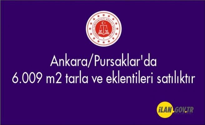 Ankara/Pursaklar'da 6.009 m² tarla ve eklentileri Satılık