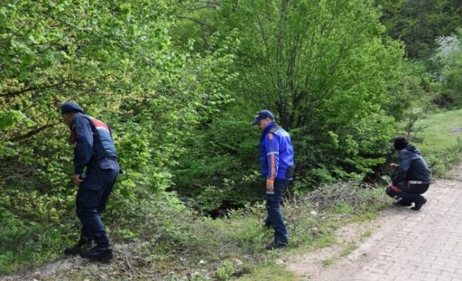 Bartın'da ormanlık alanda kaybolan kişi aranıyor