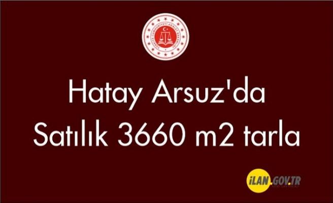 Hatay Arsuz'da Satılık 3660 m2 tarla