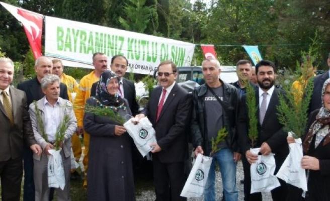 Bafra Orman İşletme Müdürlüğü Arife Günü 5 Bin Fidan Dağıttı