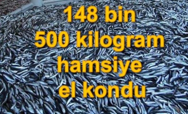 Samsun'da 148 bin 500 kilogram hamsiye el kondu