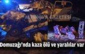 Domuzağı'nda kaza ölü ve yaralılar var