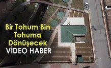 ÖZEL ALANDA MUHAFAZA EDİLECEK / VİDEO HABER