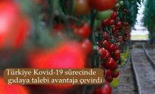 Türkiye Kovid-19 sürecinde gıdaya talebi avantaja çevirdi