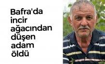 Bafra'da incir ağacından düşen adam öldü