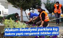 Atakum Belediyesi parklara kış bakımı yaptı rengarenk bitkiler dikti