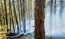 Kastamonu'da ormanlık alanda çıkan örtü yangını kontrol altına alındı
