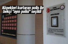 """Köpekleri kurtaran polis ile bekçi """"ayın polisi"""" seçildi"""