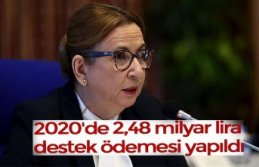 2020'de 2,48 milyar lira destek ödemesi yapıldı