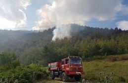 Bafra'da çıkan orman yangına müdahale ediliyor