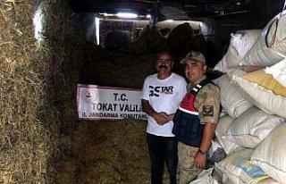 Tokat'ta 280 balya saman çalındı