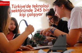 Türkiye'de teknoloji sektöründe 245 bin kişi...