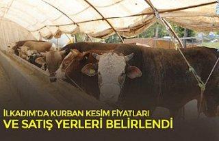 İLKADIM'DA KURBAN KESİM FİYATLARI VE SATIŞ YERLERİ...