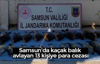 Samsun'da kaçak balık avlayan 13 kişiye para...