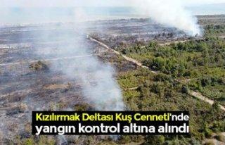 Kızılırmak Deltası Kuş Cenneti'nde yangın...