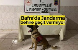 Bafra'da Jandarma zehire geçit vermiyor