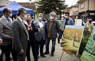 Kastamonu'da Kızılcasu Uluslararası Resim Çalıştayı...