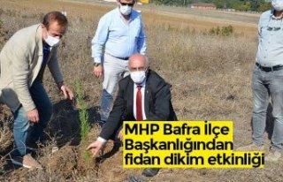 MHP Bafra İlçe Başkanlığından fidan dikim etkinliği