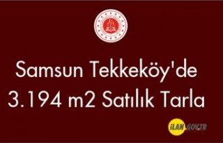 Samsun Tekkeköy'de 3.194 m2 Satılık tarla