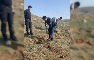 Yeşilyurt'ta polisler 70 fidanı toprakla buluşturdu