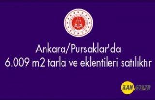 Ankara/Pursaklar'da 6.009 m² tarla ve eklentileri...