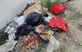 Bolu'da boş arazide biriktirilen çöpler toplandı